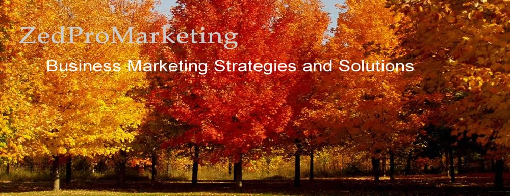 ZedProMarketing – Business Marketing Strategies